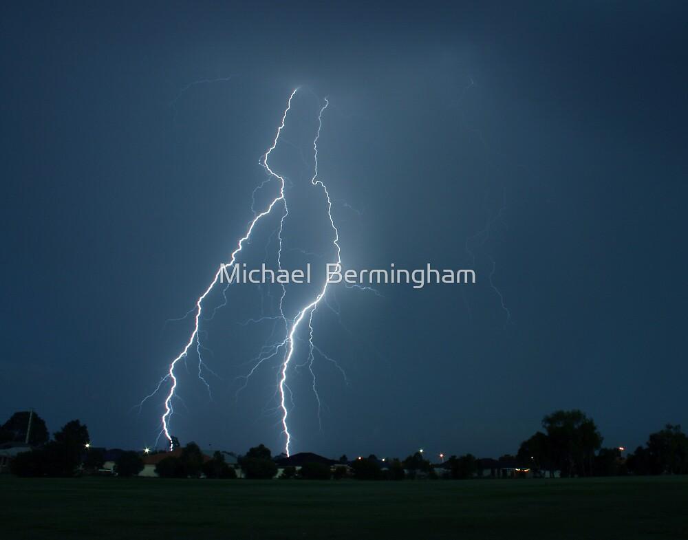 Electrifying by Michael  Bermingham