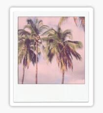 Palme Polaroid Sticker