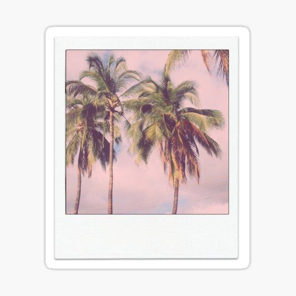 Palm Tree Polaroid Sticker