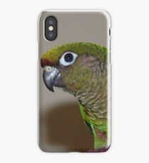 Maroon-Bellied Conure - iPhone Case - NZ iPhone Case/Skin
