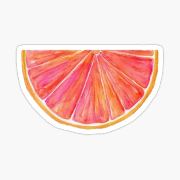 Watercolor Citrus Sticker
