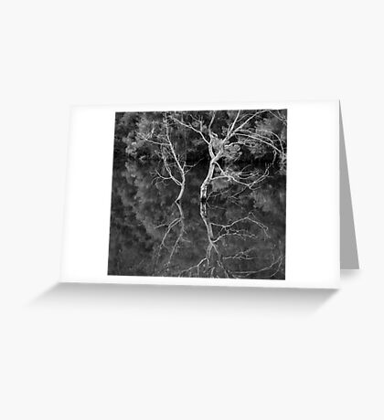 Reflections in Mono, Yan Yean Park Greeting Card