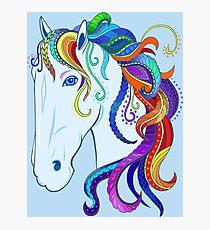 Rainbow horse. Photographic Print