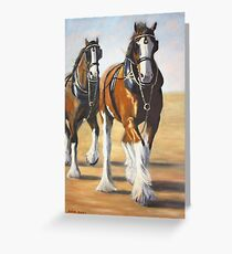 clydesdale heavy horse. Greeting Card