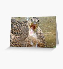 Hey Look!!! I Can Catch Water... Mallard Duckling - NZ Greeting Card