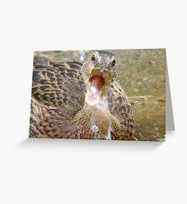 Hey Look!!! I Can Catch Water... Mallard Duckling - NZ Greeting Card