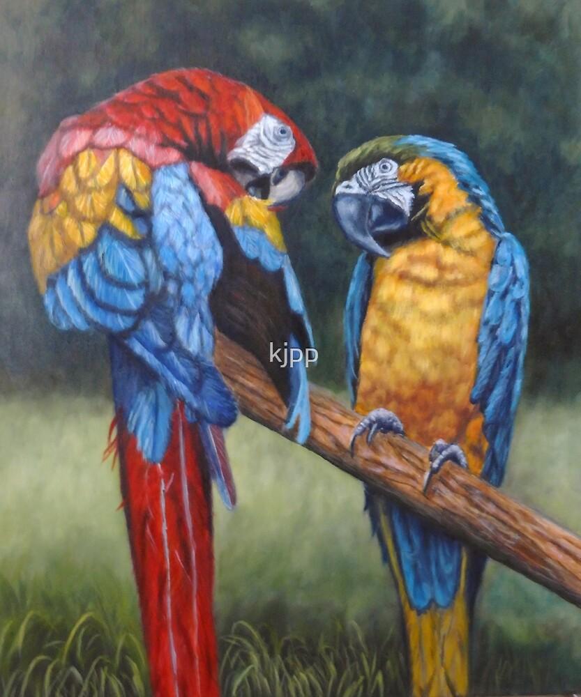 Macaws by kjpp