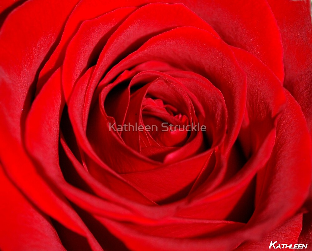 Red Silk by Kathleen Struckle