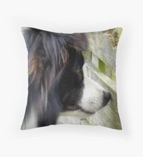 I Keep A Close Watch On These Sheep Of Mine... Border Collie - NZ Throw Pillow