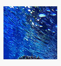 Under the Sea -- Hawaii Abstract Photographic Print