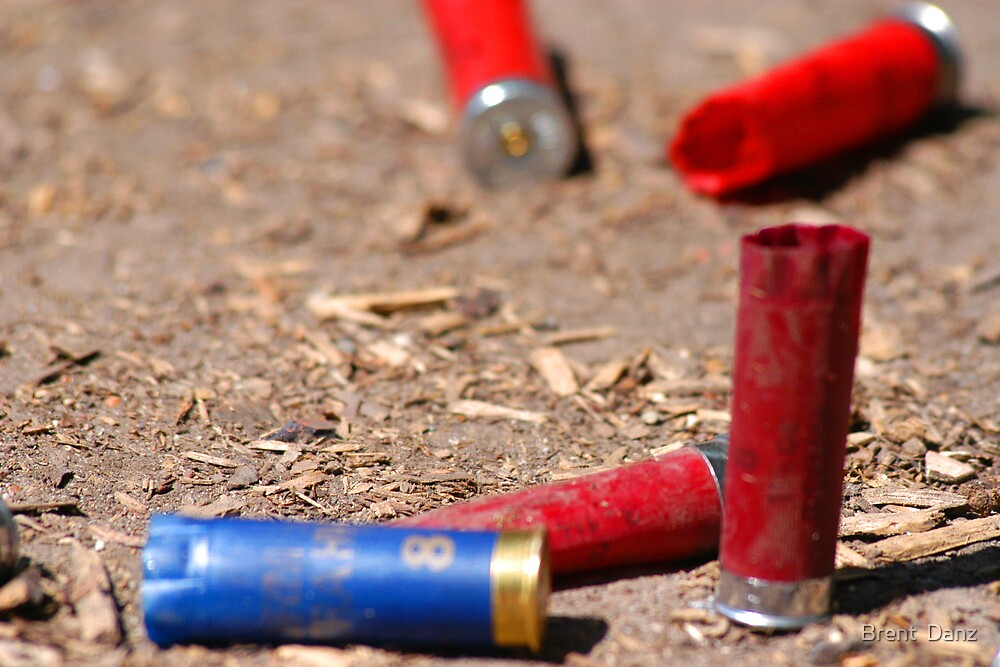 Blue and Red Shotgun Shells by Brent  Danz