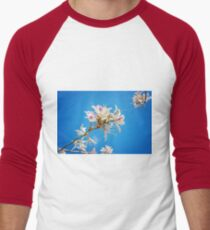 White flowers with pink over blue background Men's Baseball ¾ T-Shirt
