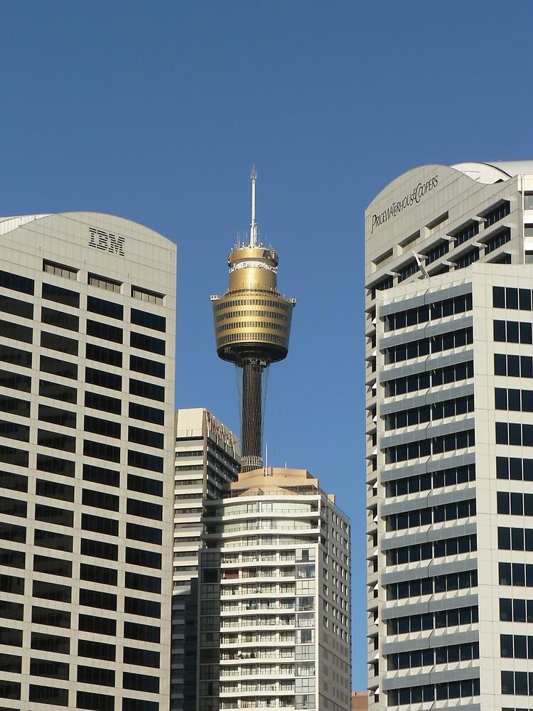 Sydney Skyline by stevej