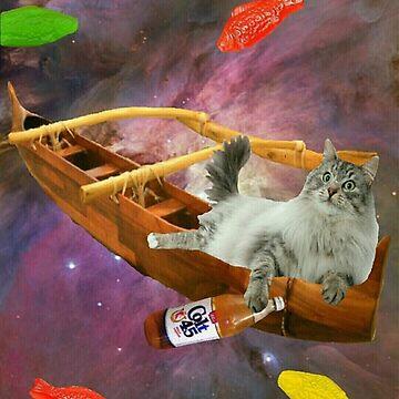 outrigger canoe cat by taco-elgato