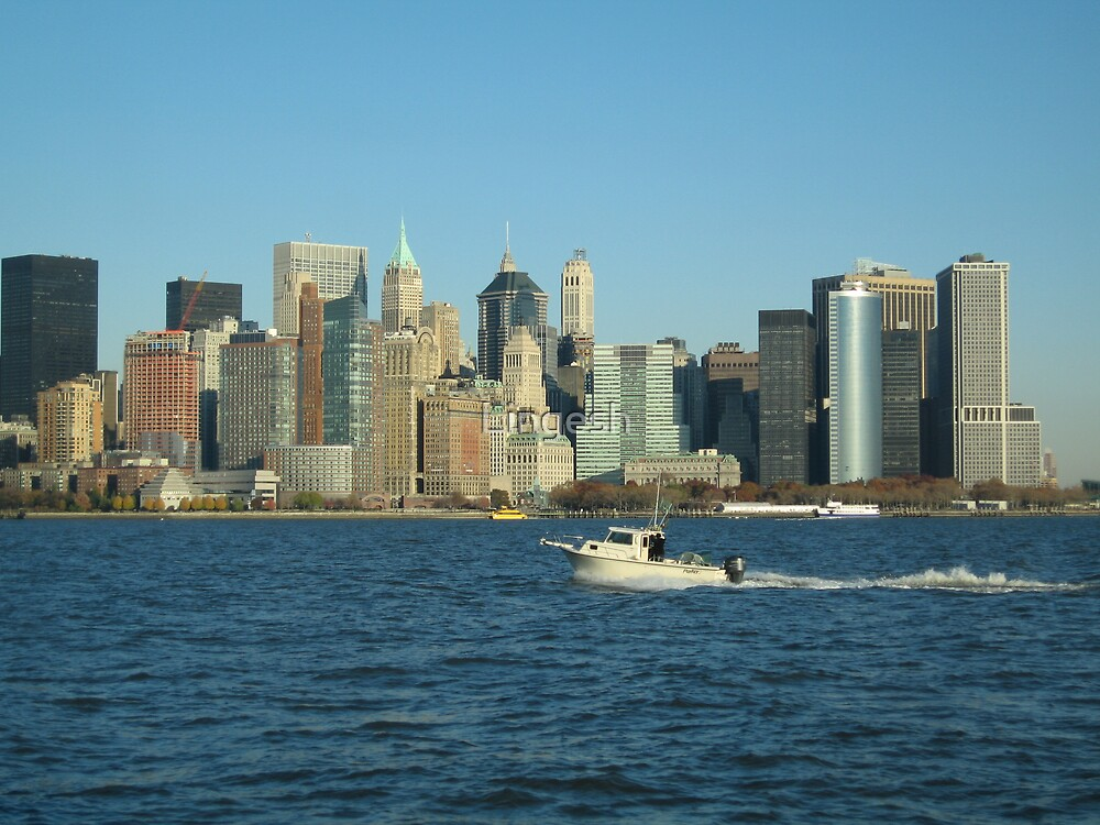 NY view on Hudson river by Lingesh