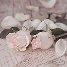 Pink Rose nostalgic Still Life by artsandsoul