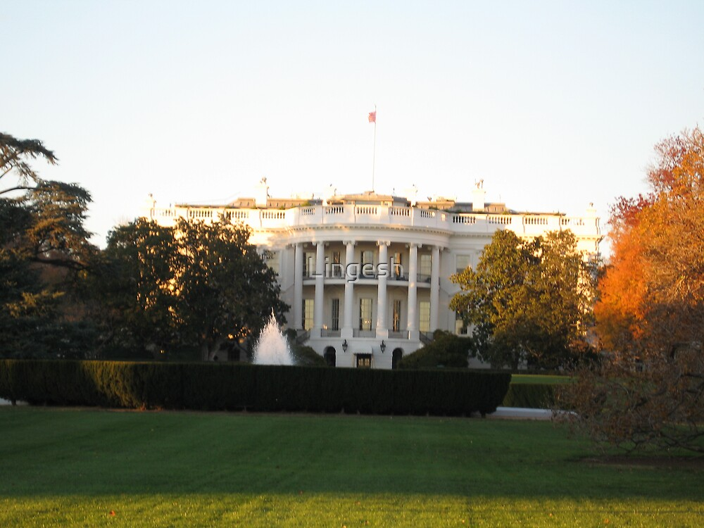 White House in United States by Lingesh