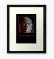 Trampoline 2016 Framed Print