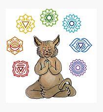 Yoga Cat with Chakras Lámina fotográfica