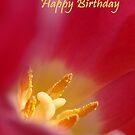 Tulip Birthday Card by Lorraine Deroon