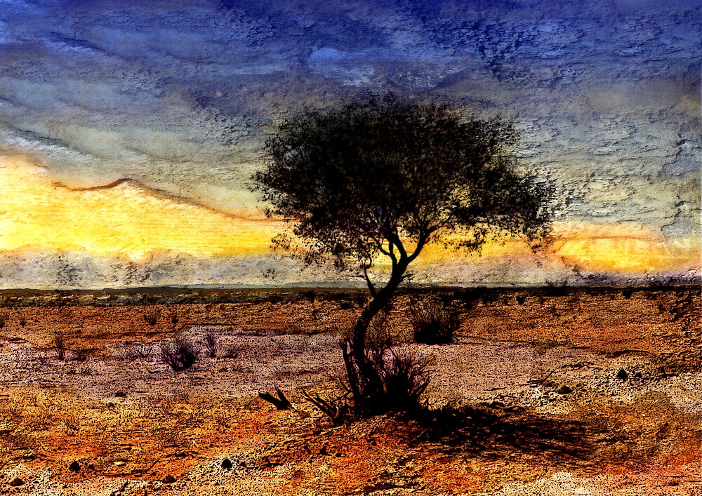 In the middle of nowhere by Sabine Spiesser