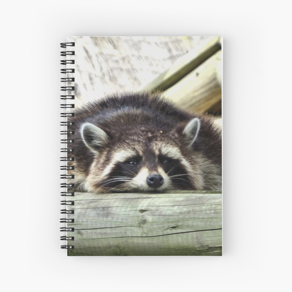 Tired Raccoon Spiral Notebook