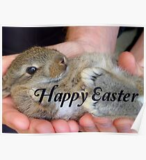 Happy Easter Bunny - NZ Poster