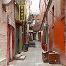 San Francisco's Chinatown by Igor Shrayer