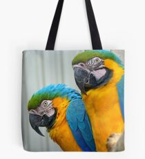 She Looks Pretty Serious... Are We Supposed To Smile... - Blue & Gold Mac-caw - NZ Tote Bag