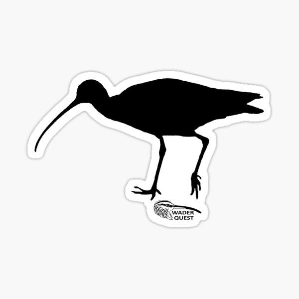 Curlew Sticker