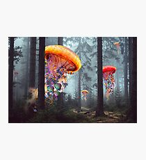 Forest of Jellyfish Worlds Photographic Print