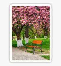cherry blossom in city park Sticker