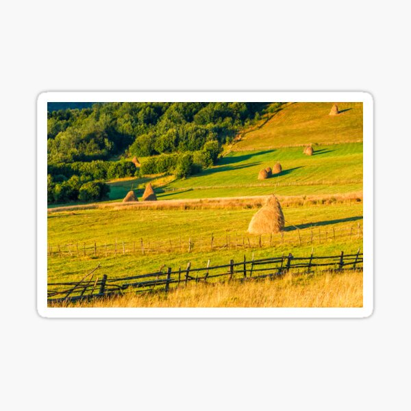 haystacks and a trees on a hillside meadow Sticker