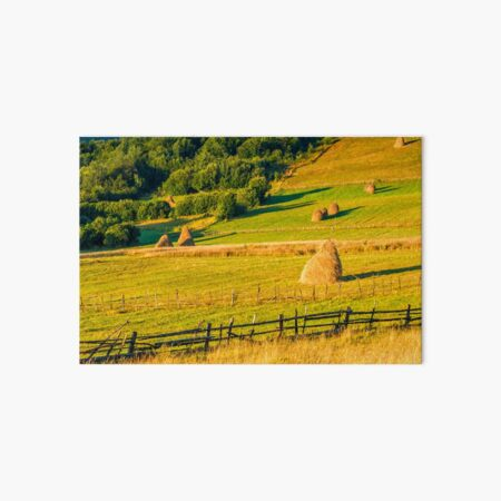 haystacks and a trees on a hillside meadow Art Board Print