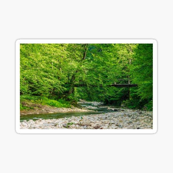 bridge over the forest river Sticker