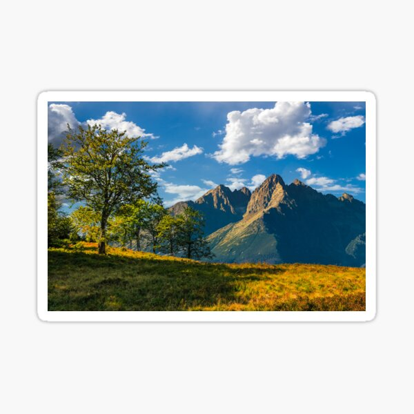 trees on the hill in High Tatry Mountain ridge Sticker