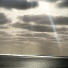 The light by delfinada