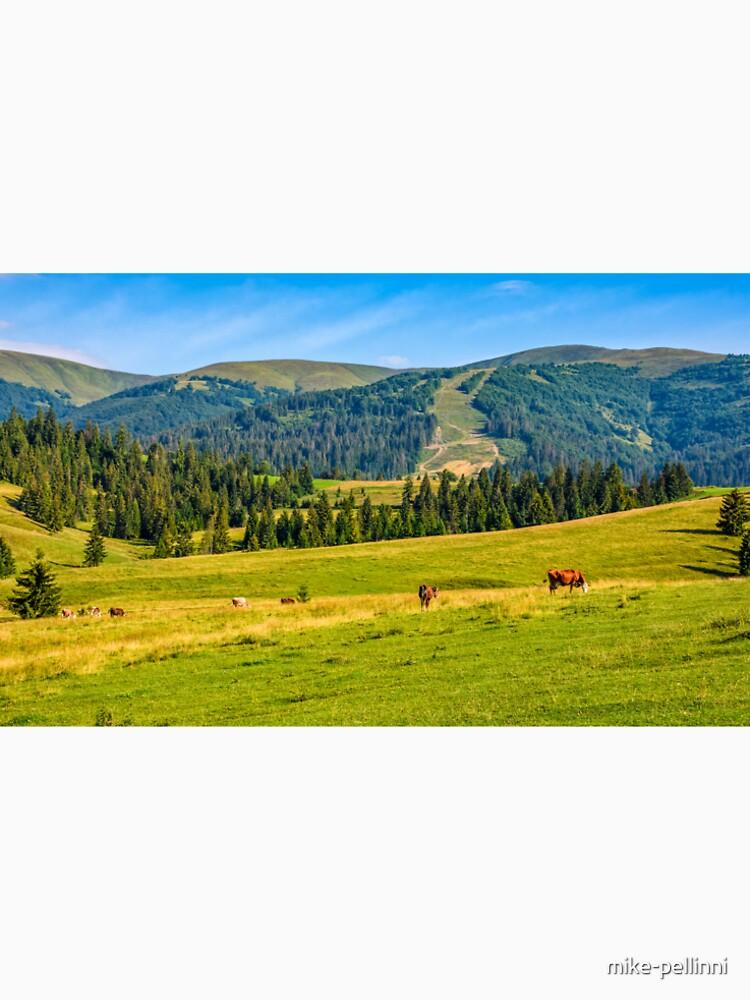 few cows grazing on hillside meadow by mike-pellinni