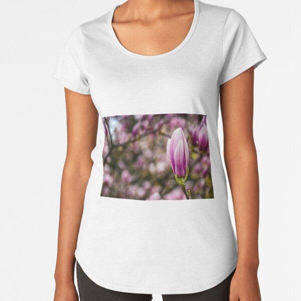 Magnolia flower blossom in springtime Premium Scoop T-Shirt