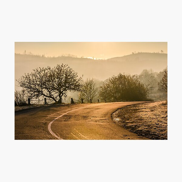 tree by the road in mountains at sunrise Photographic Print