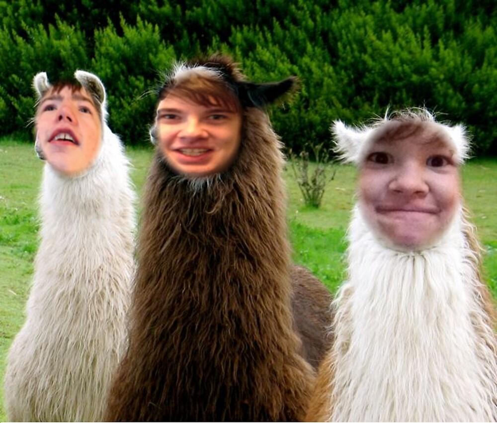 Zabwag llamas by Zabwag