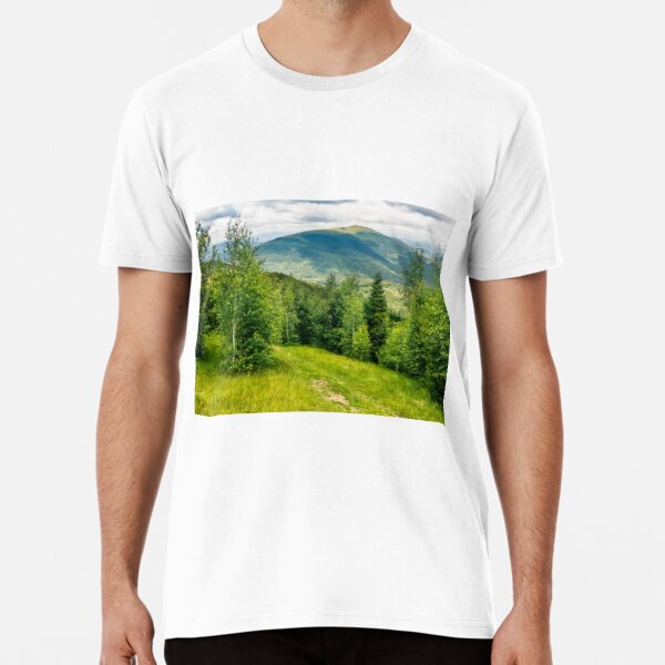 path through the meadow in forest on a hillside in mountains Premium T-Shirt