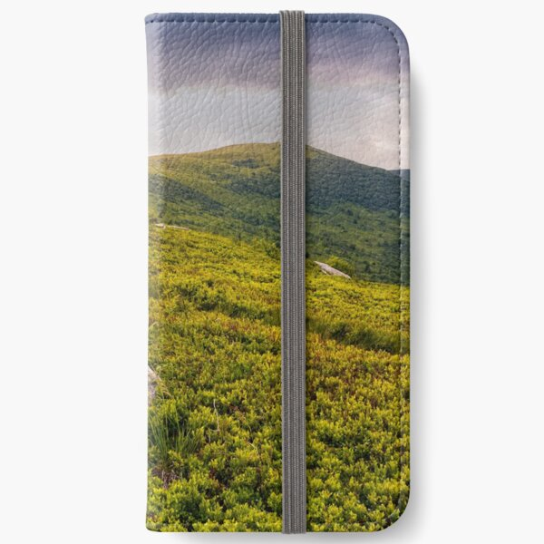 high mountain landscape iPhone Wallet