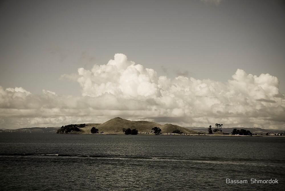 New Zealand cost by Bassam  Shmordok