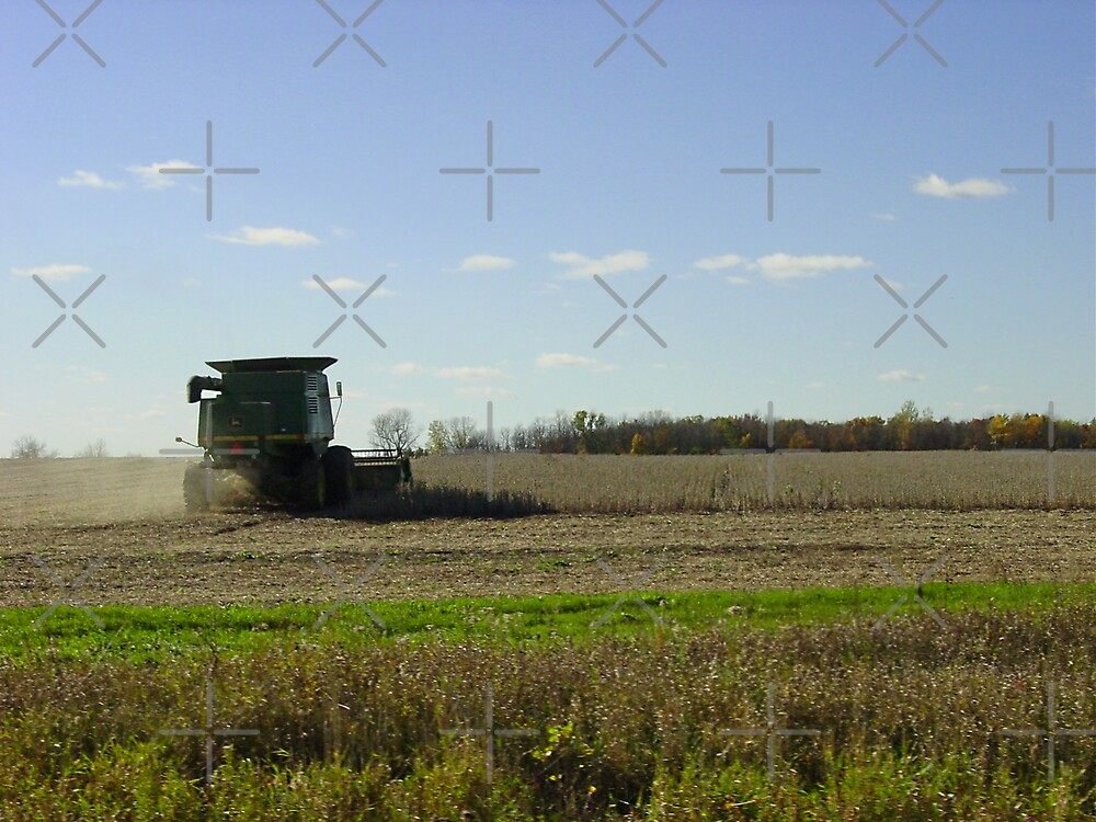 The Harvest by Al Mullen