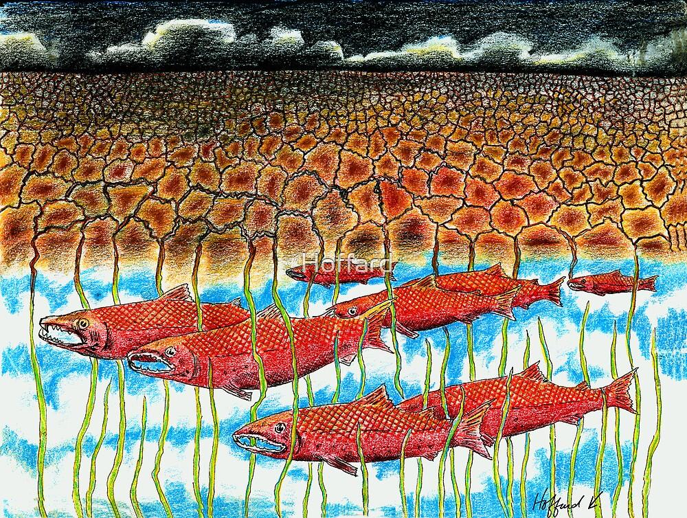 Fish Dream by Hoffard