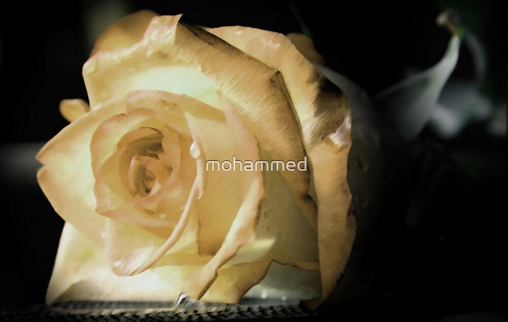 flower by mohammed