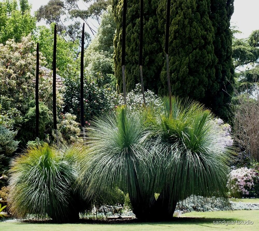 Flowing Grass Trees Australia by sandysartstudio