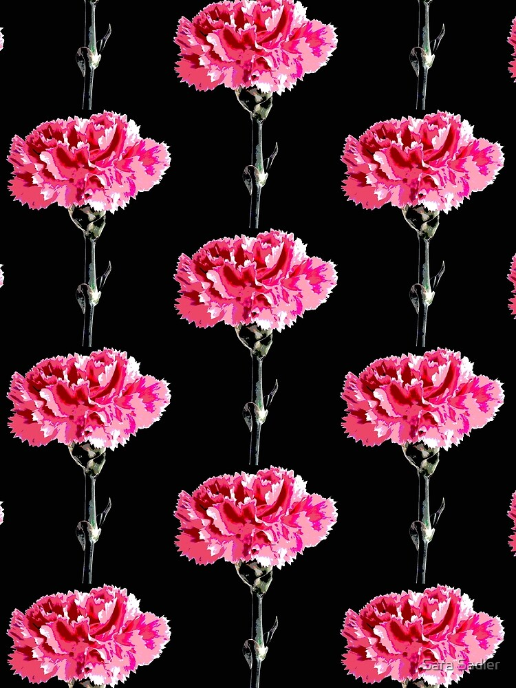 Psychedelic carnation by sadler2121