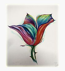Colored pencil ''Flower'' Photographic Print